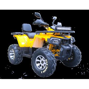 Квадроцикл ATV-200 WILD TRUCK X (2020)