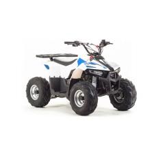 Квадроцикл ATV-110 EAGLE
